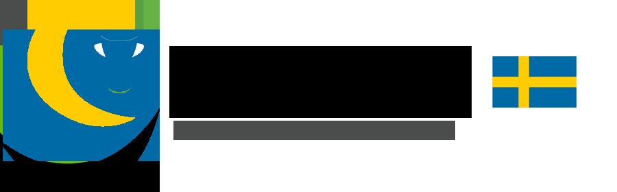 Swedish Stockholm Football Academy